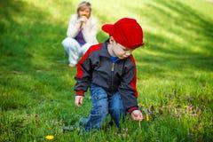 Little boy pick dandelion for mother Stock Photo