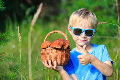 Little boy picking mushrooms in green forest Stock Photos