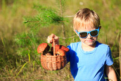 Little boy picking mushrooms in green forest Royalty Free Stock Photos