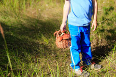 Little boy picking mushrooms in green forest Stock Photo