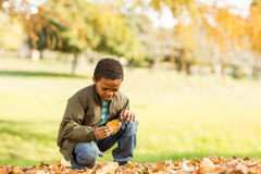 Little boy picking up some leaves Royalty Free Stock Photos