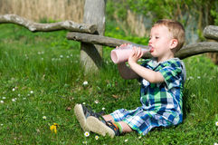 Little boy at a picnic Royalty Free Stock Photography