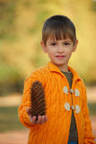 Little boy with pinecones in park Stock Image