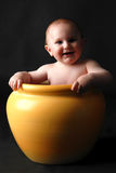 Little boy in planter pot Stock Photo