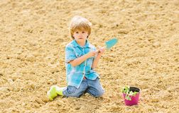 Little boy planting flower in field. Fun time at farm. Happy childhood concept. Child having fun with little shovel and. Plant in pot. Planting in field stock photography