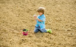 Little boy planting flower in field. Fun time at farm. Happy childhood concept. Little helper in garden. Child having. Fun with little shovel and plant in pot royalty free stock images