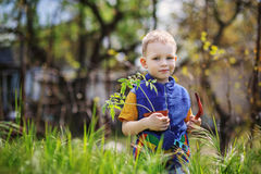 Little boy planting and gardening tomato seedlings. Handsome little blond boy planting and gardening tomato seedlings in garden or farm in spring day royalty free stock image