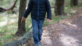 Little boy play with a fallen tree stock footage
