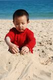 Little Boy Playing. Cute young Boy playing in sunny beach Royalty Free Stock Photo