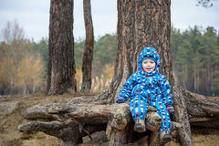 Little boy playing, on autumn landscape, sitting and smiling the tree root royalty free stock photography