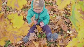 Little boy playing with autumn leaves in autumn park slow motion stock video footage