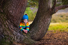 Little boy playing in autumn park Royalty Free Stock Image