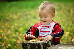 Little boy is playing in autumn park Royalty Free Stock Photos