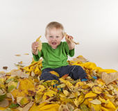 Little boy playing in colorful yellow leaves Stock Image