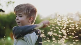 Little boy playing with dandelions in the park. The boy is holding a bouquet with white dandelions and whirling in slow motion on the blurred background. Close stock video footage