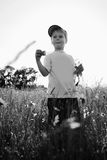 Little boy playing in the field Stock Image