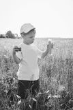 Little boy playing in the field Royalty Free Stock Photo