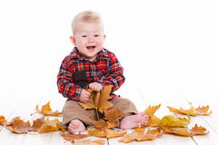Little boy playing on the floor with maple leaves. Stock Photo