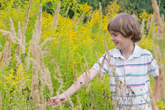 Little boy playing in a flower field Royalty Free Stock Images