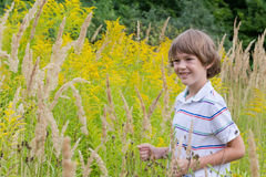 Little boy playing in a flower field Stock Image