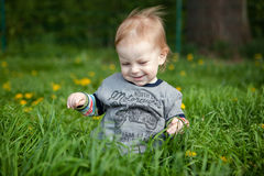 Little boy playing in grass Stock Photo