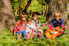 Little boy is playing guitar to a group of friends and husky pu stock photography