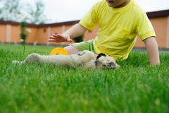 Little boy playing with his cute dog Royalty Free Stock Image