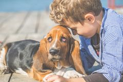 Little boy playing with his dog bred Basset Hound near sea stock images