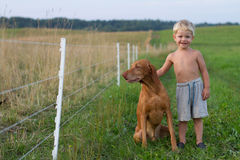 Little boy playing with his dog. Happy smiling little boy with hungarian vizsla dog Royalty Free Stock Photography