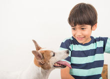 Little boy playing with his friend dog jack russel Royalty Free Stock Photos