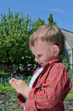 Little boy playing with an insect Royalty Free Stock Photo