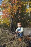 Little boy playing with leaves at autumn park. Dreaming little boy sitting under trees with red leaves in fall Royalty Free Stock Photography