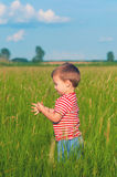 Little boy playing on the meadow Stock Photo