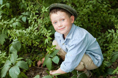 Little boy. Playing on nature Royalty Free Stock Photos