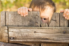 Little boy playing peek a boo. Through a gap in a broken plank in a rustic wooden gate looking at the camera with one eye royalty free stock image