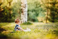 Little boy is playing with a rabbit in the park royalty free stock images