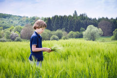 Little boy playing in a scenic field Royalty Free Stock Image