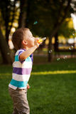 Little boy playing with soap bubbles Royalty Free Stock Photo