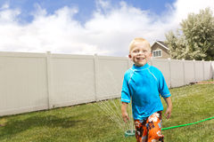 Little Boy Playing in the sprinklers Stock Photos