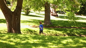 Little boy playing with toy airplane stock video footage