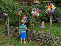 Little boy playing with toys of wind. Multicolored, childhood, green grass Stock Photography