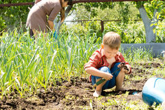 Little boy playing in a vegetable garden Stock Image