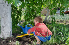 Little boy playing in the vegetable garden Stock Images