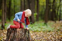Little boy playing on wooden stump during stroll in the forest Stock Photo