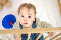 Little boy in the playpen Royalty Free Stock Photography