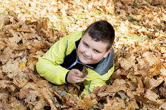 Little boy plays in autumn dry leaves Royalty Free Stock Image