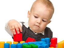 Little boy plays with building bricks Royalty Free Stock Photography