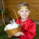 Little boy plays with white Easter Bunny. on the green grass and baby bunnies, Spring Festival and birth. Living Easter rabbits stock images