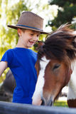 Little boy with pony Stock Photography