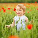Little boy in poppy field Royalty Free Stock Photos